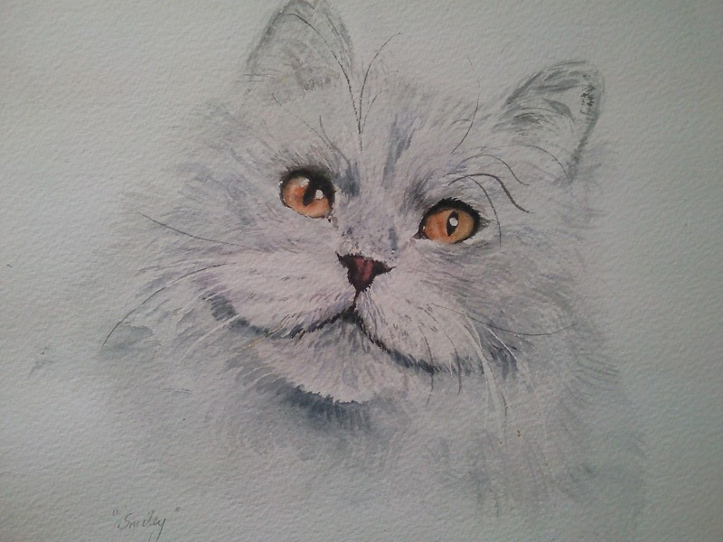 watercolour cat head